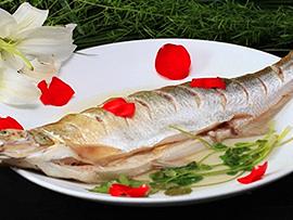 洪泽湖白鱼