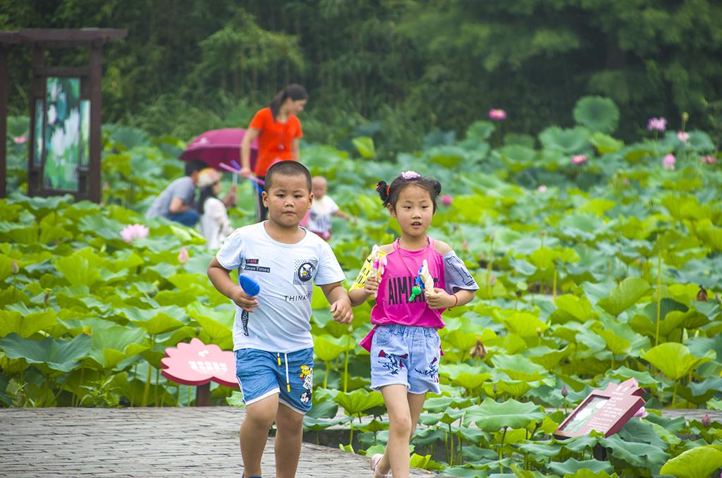 2018泗洪洪泽湖湿地亲子定向赛报名开始啦!