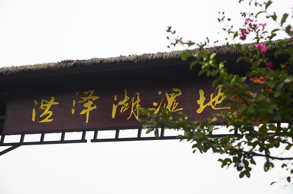 """""""举国欢庆日 湿地乐不停""""——泗洪洪泽湖湿地中秋国庆系列活"""